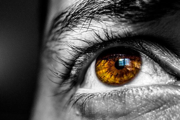 Iris couleur homme